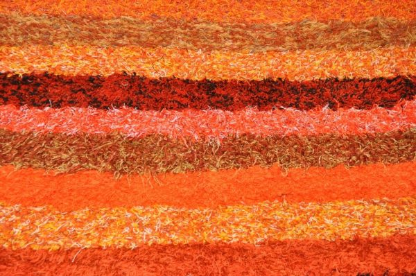 Naranjade pelo largo 170-240